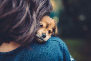 Pet Friendly Drug Rehab